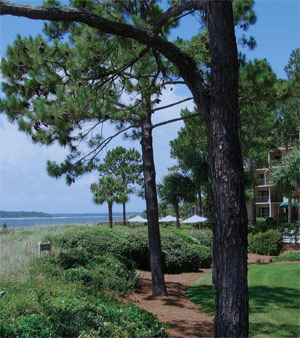A photo of Beachside Tennis Villas in Sea Pines, South Caorlina