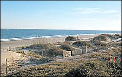 Photo of the beach at Wild Dunes, Isle of Palms, SC